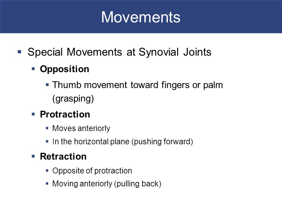 Movements Special Movements at Synovial Joints Opposition