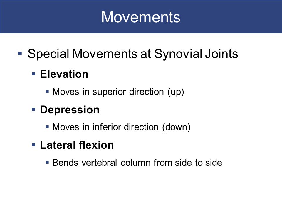 Movements Special Movements at Synovial Joints Elevation Depression