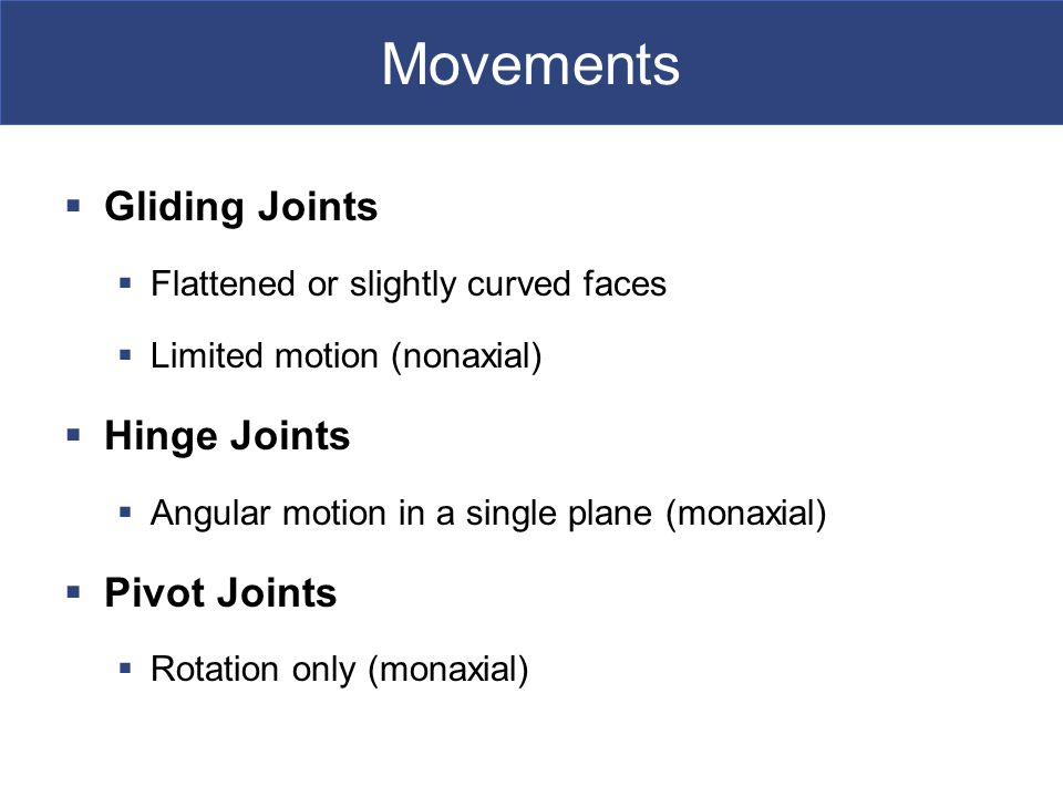 Movements Gliding Joints Hinge Joints Pivot Joints