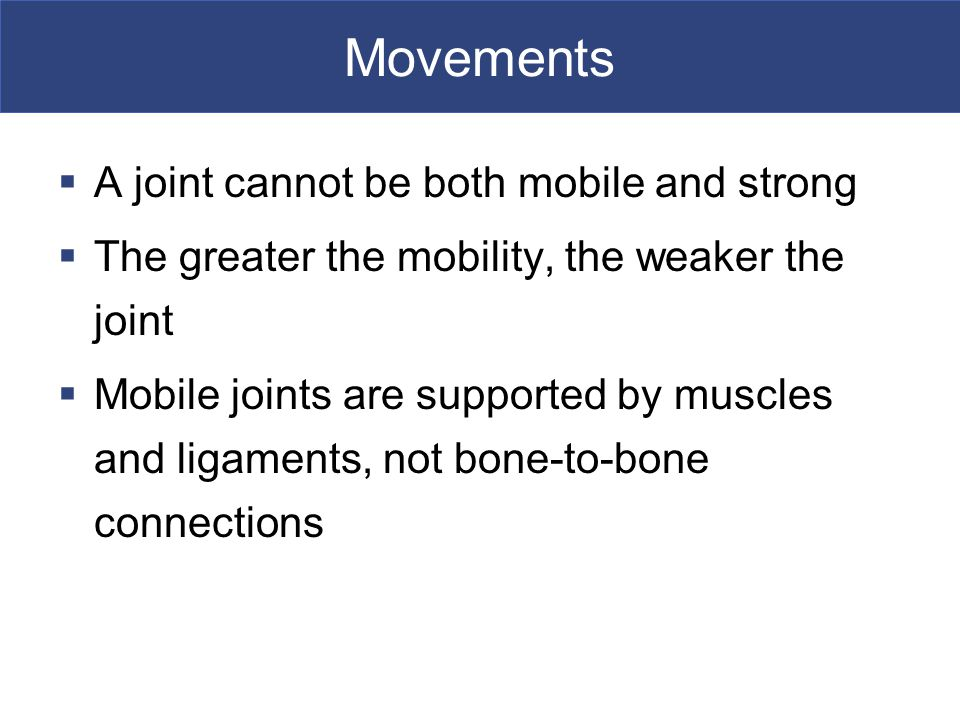 Movements A joint cannot be both mobile and strong