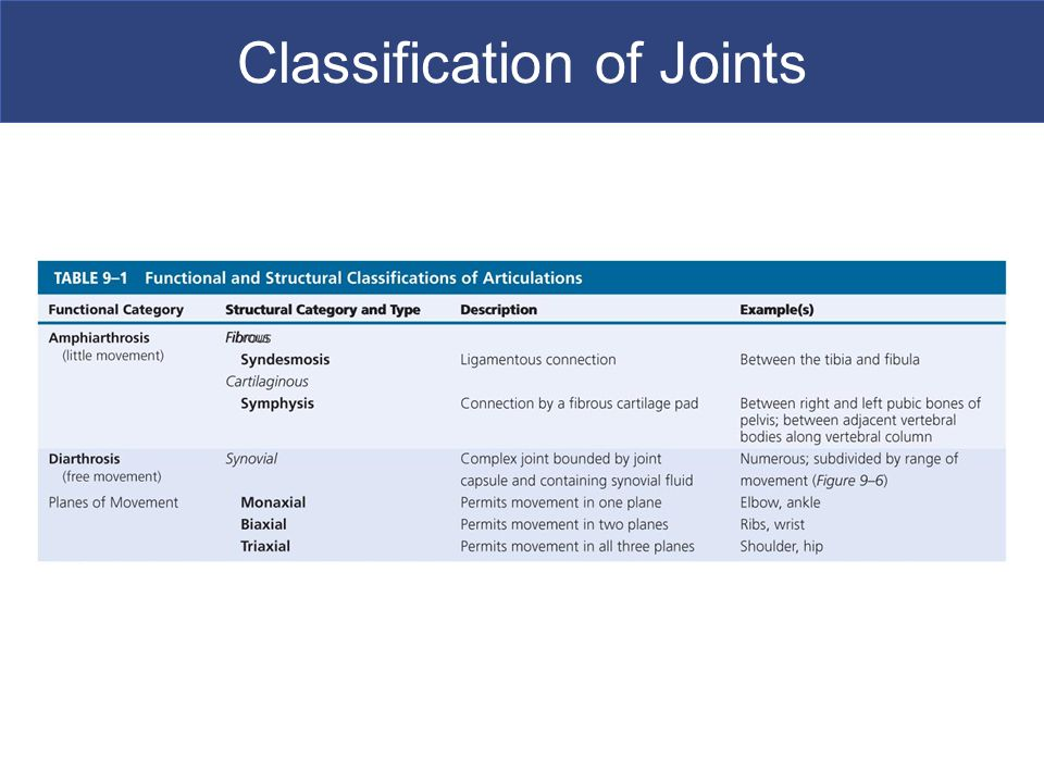 Classification of Joints