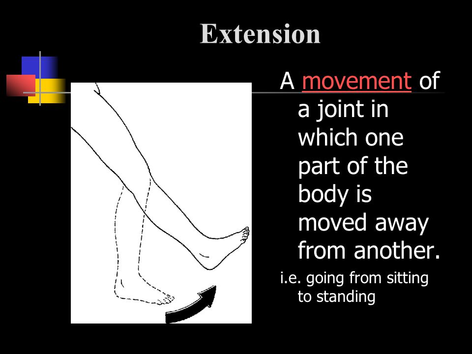 Extension A movement of a joint in which one part of the body is moved away from another.