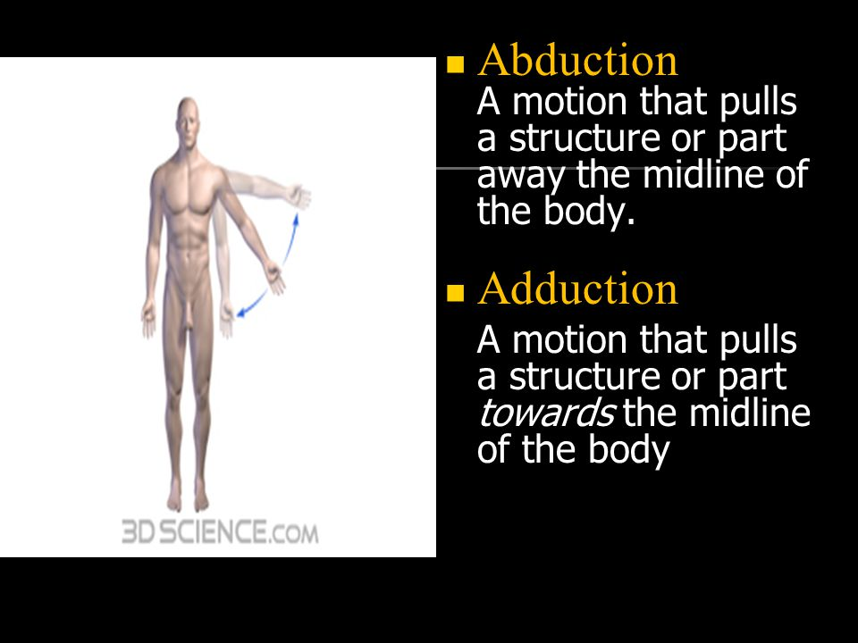 Abduction A motion that pulls a structure or part away the midline of the body.