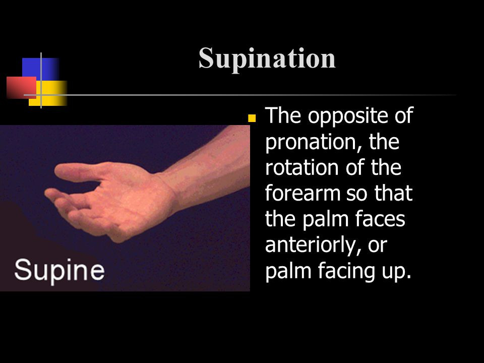 Supination The opposite of pronation, the rotation of the forearm so that the palm faces anteriorly, or palm facing up.