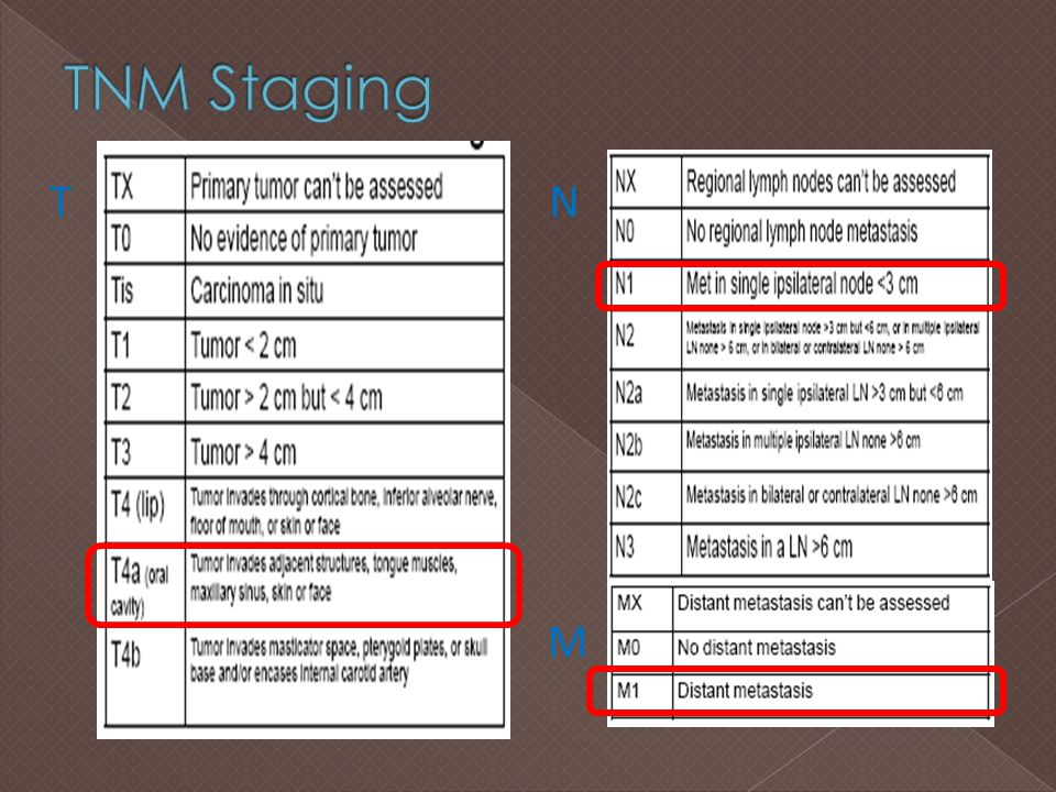 TNM Staging T N Source: American Joint Committee on Cancer Staging Manual, 6th ed. M