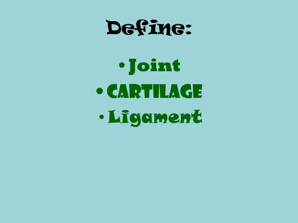 Define: Joint Cartilage Ligament