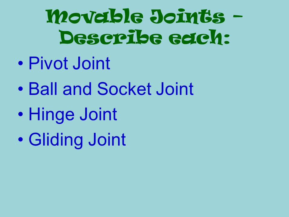 Movable Joints – Describe each: