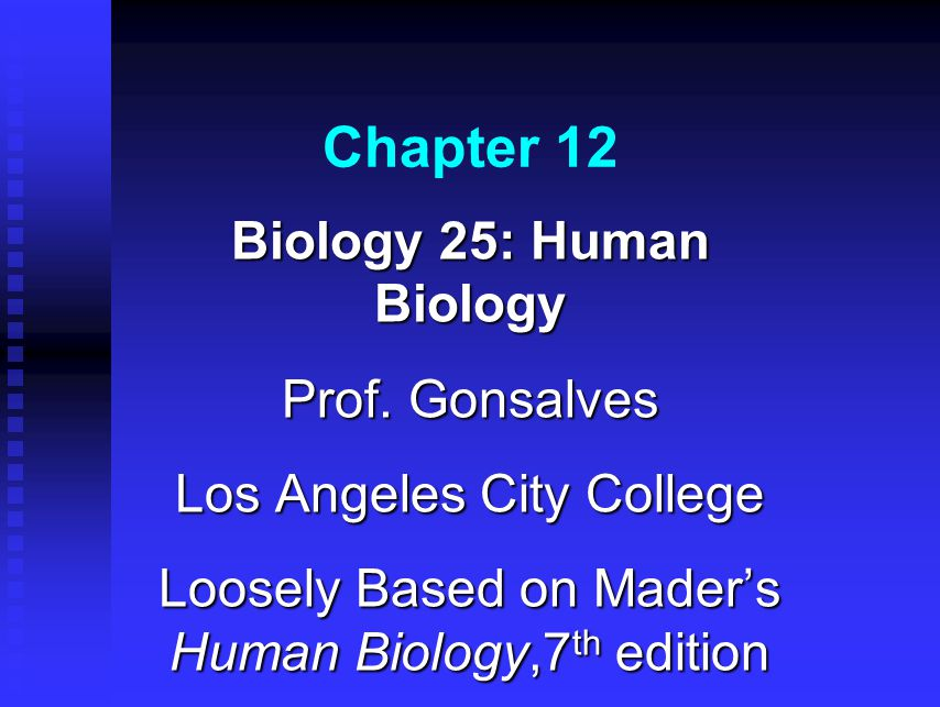 Chapter 12 Biology 25: Human Biology Prof. Gonsalves