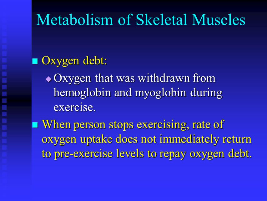 Metabolism of Skeletal Muscles