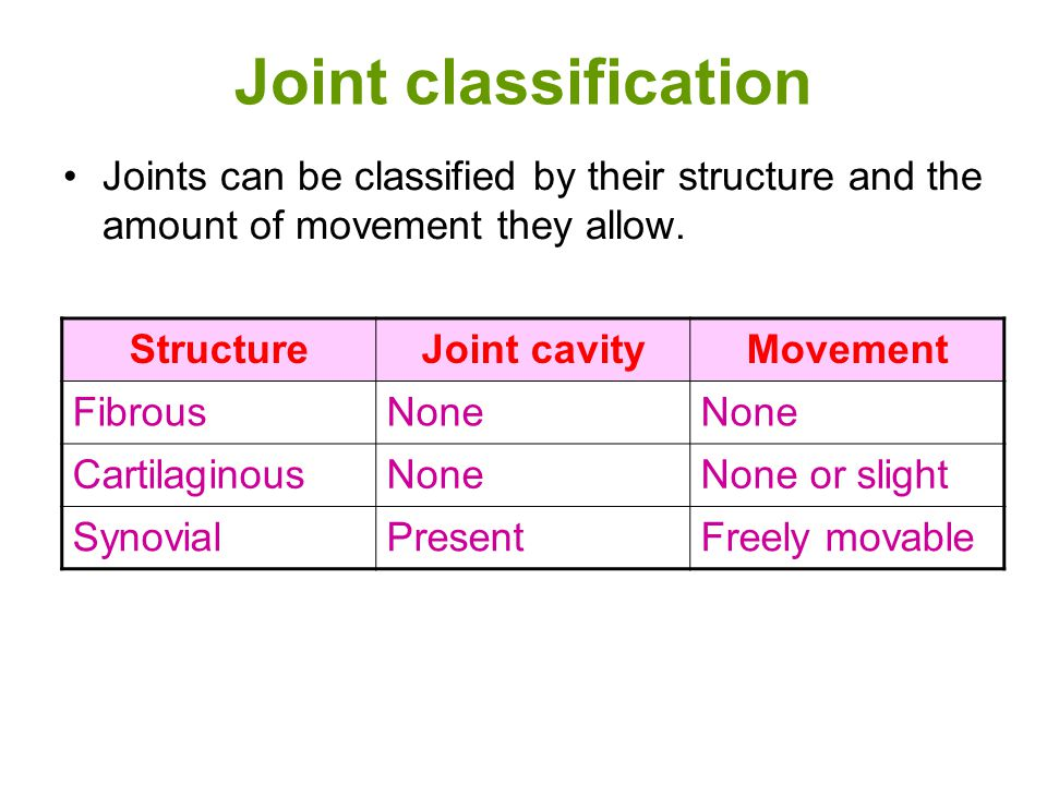 Joint classification Joints can be classified by their structure and the amount of movement they allow.
