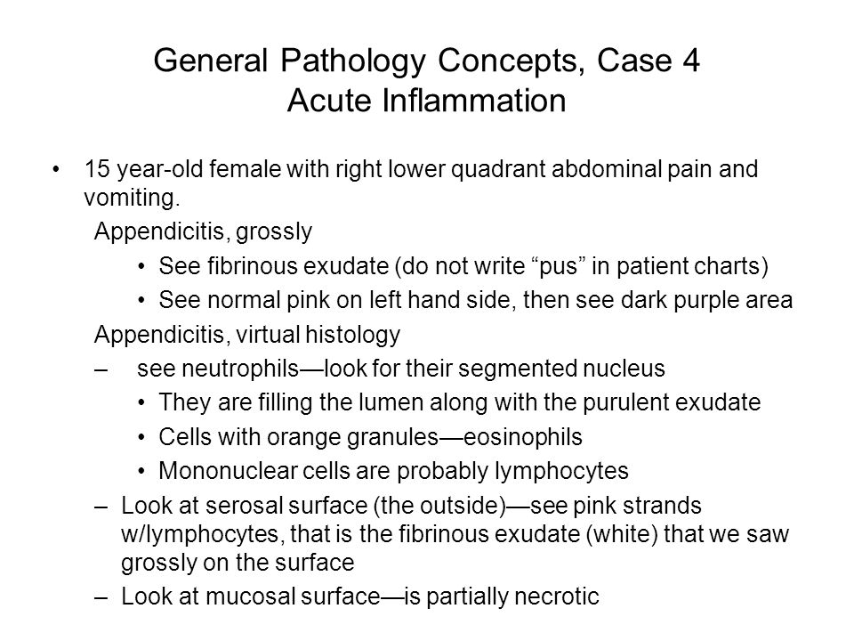 General Pathology Concepts, Case 4 Acute Inflammation