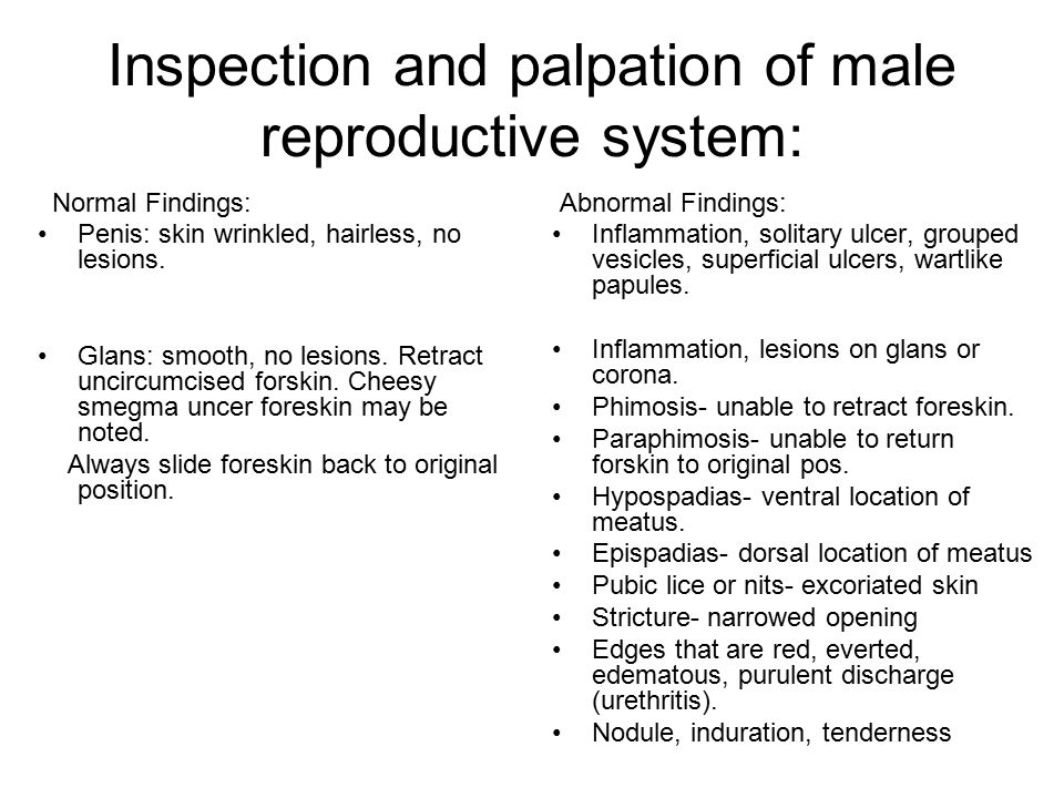 Inspection and palpation of male reproductive system: