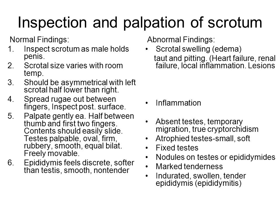 Inspection and palpation of scrotum