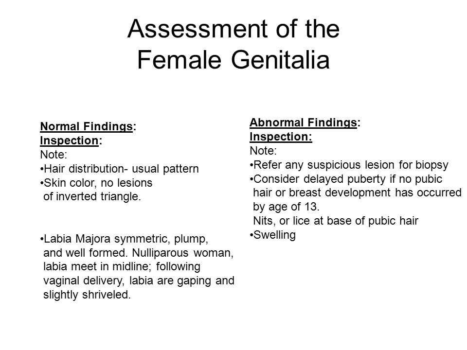 Assessment of the Female Genitalia