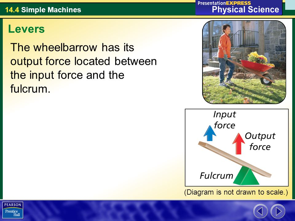 Levers The wheelbarrow has its output force located between the input force and the fulcrum.