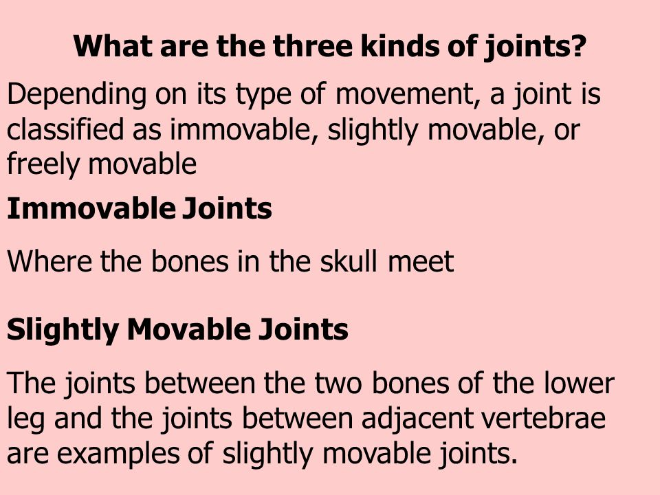 What are the three kinds of joints