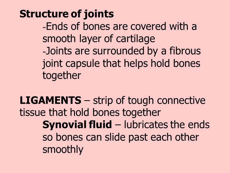Structure of joints. -Ends of bones are covered with a