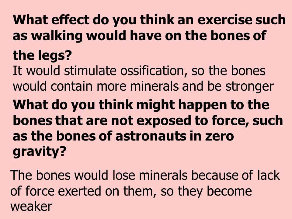 What effect do you think an exercise such as walking would have on the bones of the legs