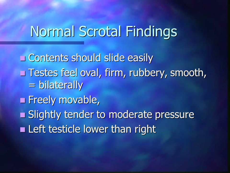 Normal Scrotal Findings