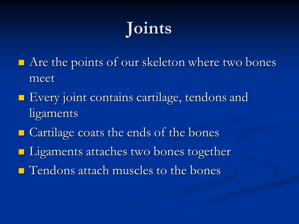 Joints Are the points of our skeleton where two bones meet