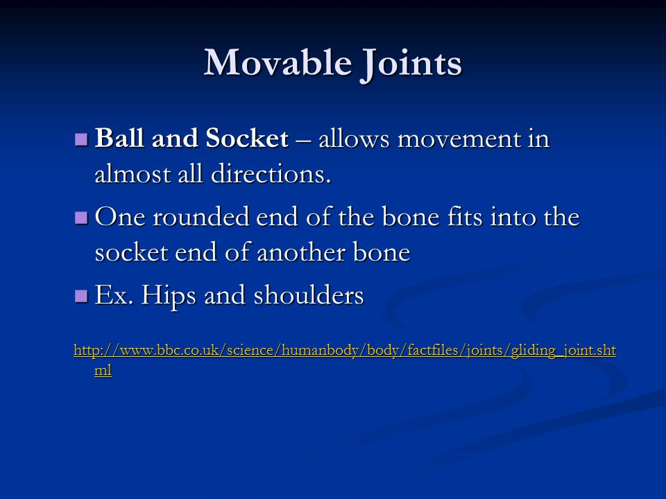 Movable Joints Ball and Socket – allows movement in almost all directions. One rounded end of the bone fits into the socket end of another bone.