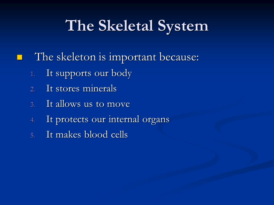 The Skeletal System The skeleton is important because: