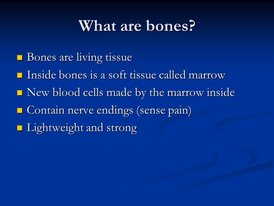 What are bones Bones are living tissue