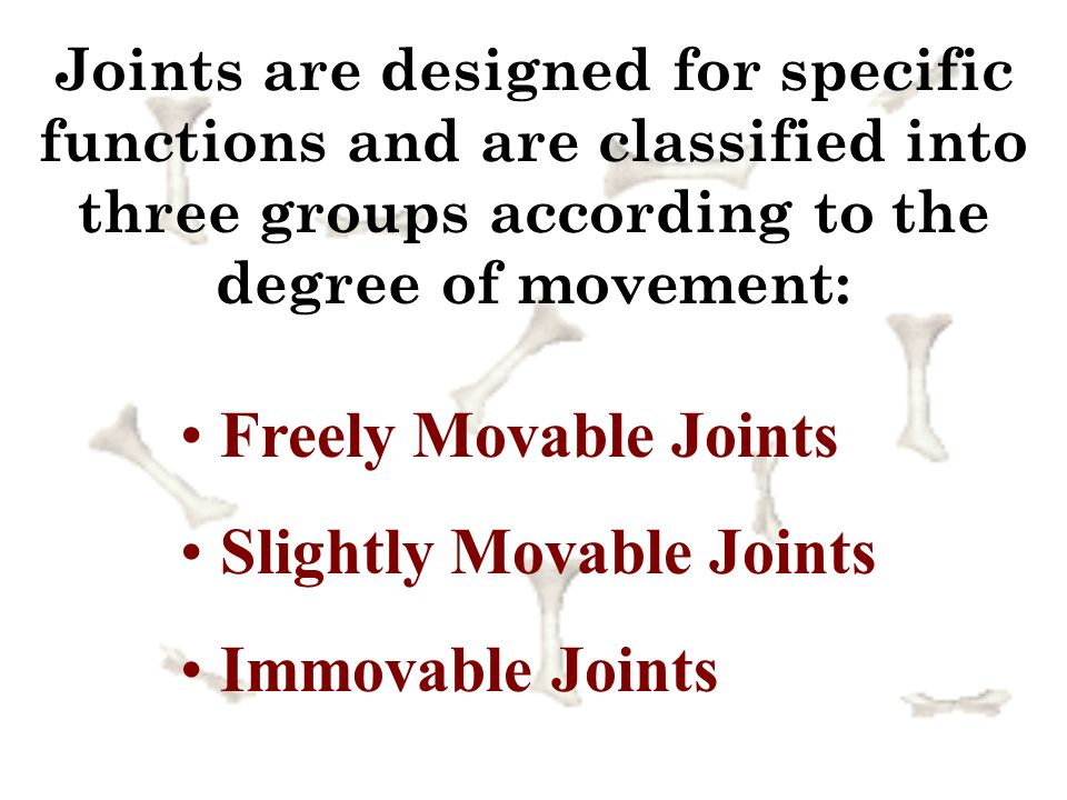 Slightly Movable Joints Immovable Joints