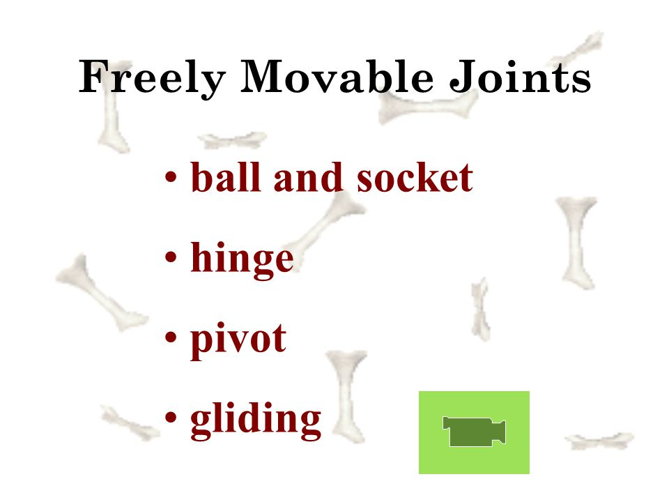 Freely Movable Joints ball and socket hinge pivot gliding