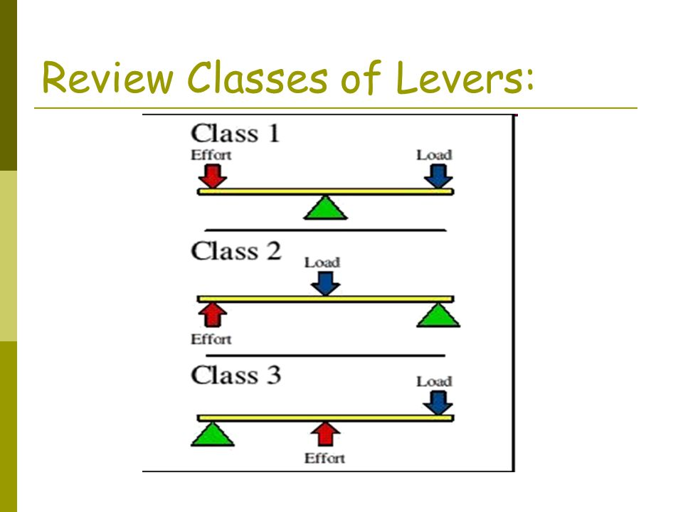 Review Classes of Levers: