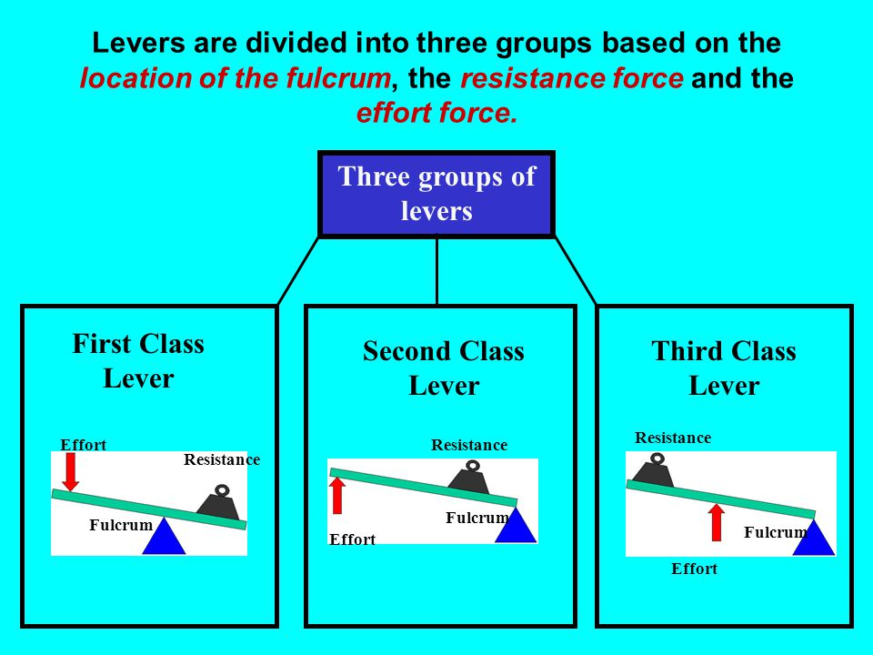Levers are divided into three groups based on the location of the fulcrum, the resistance force and the effort force.