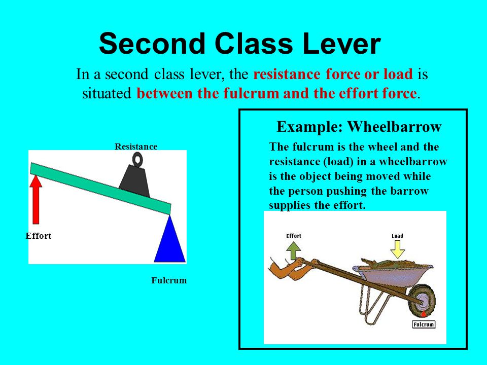 Second Class Lever In a second class lever, the resistance force or load is situated between the fulcrum and the effort force.