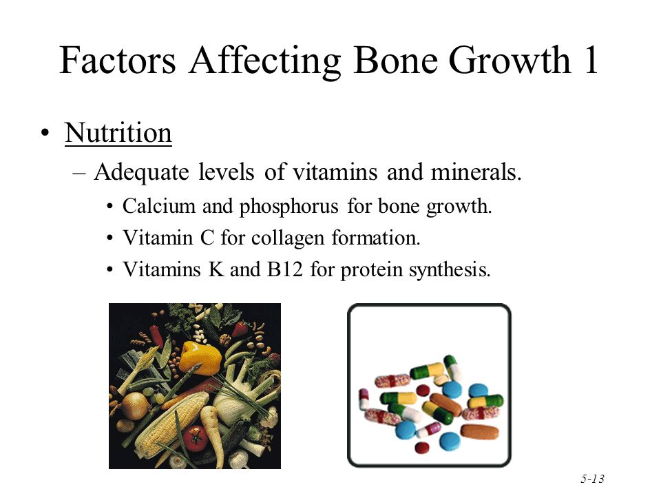 Factors Affecting Bone Growth 1