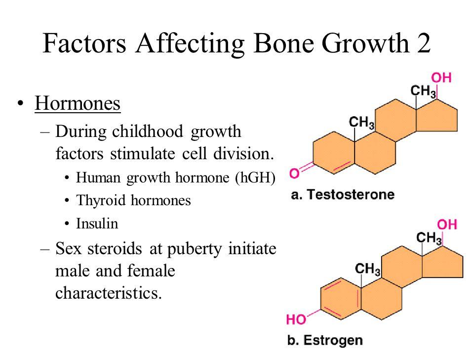 Factors Affecting Bone Growth 2
