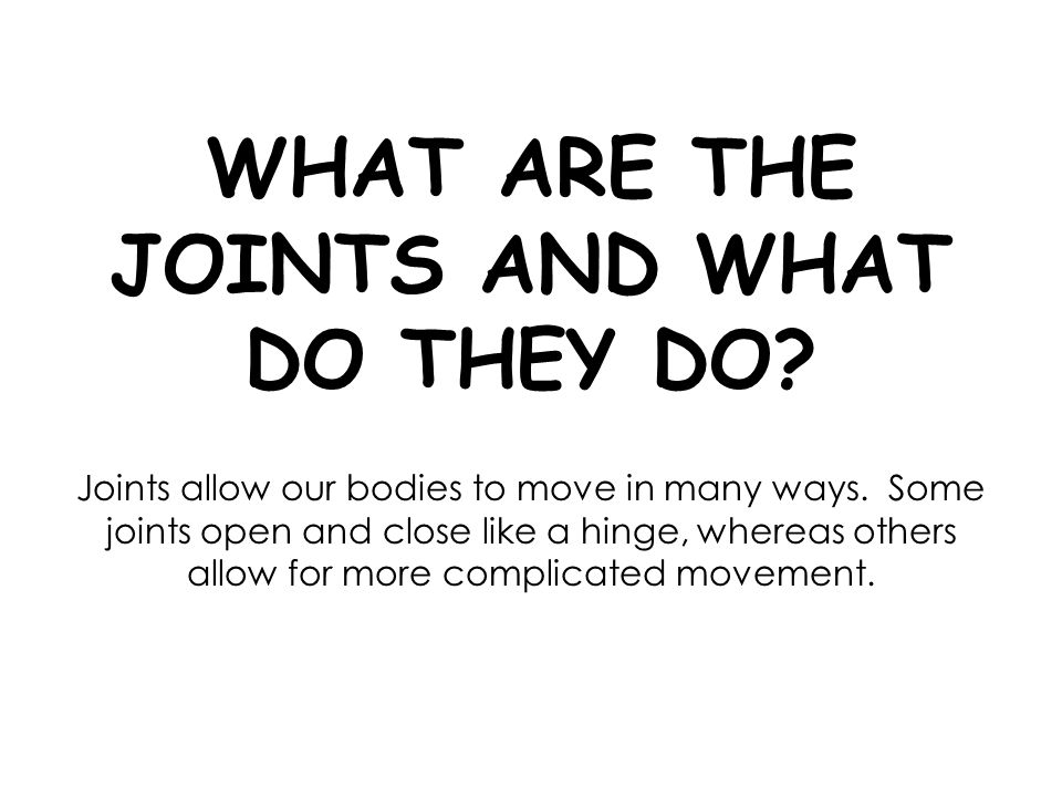 WHAT ARE THE JOINTS AND WHAT DO THEY DO