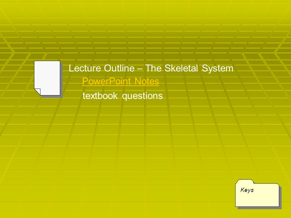 Lecture Outline – The Skeletal System
