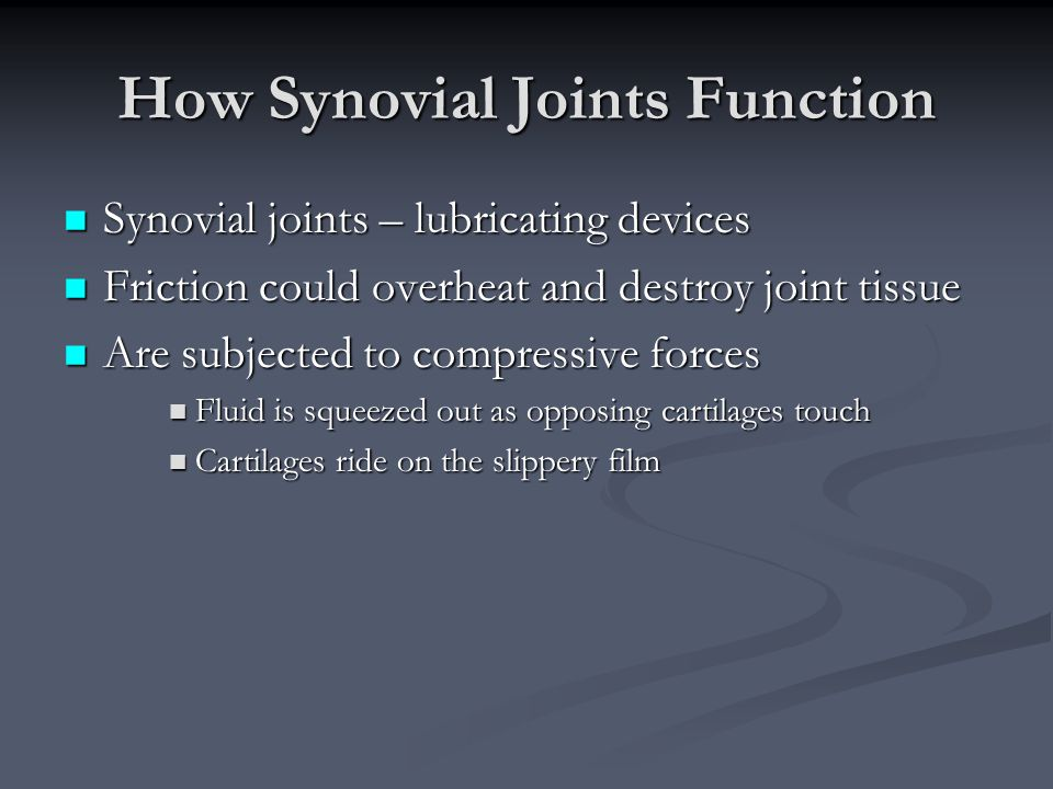 How Synovial Joints Function