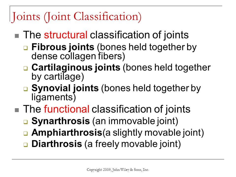Joints (Joint Classification)