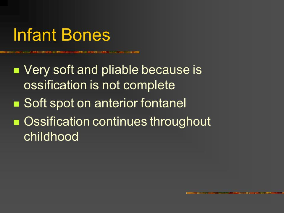 Infant Bones Very soft and pliable because is ossification is not complete. Soft spot on anterior fontanel.