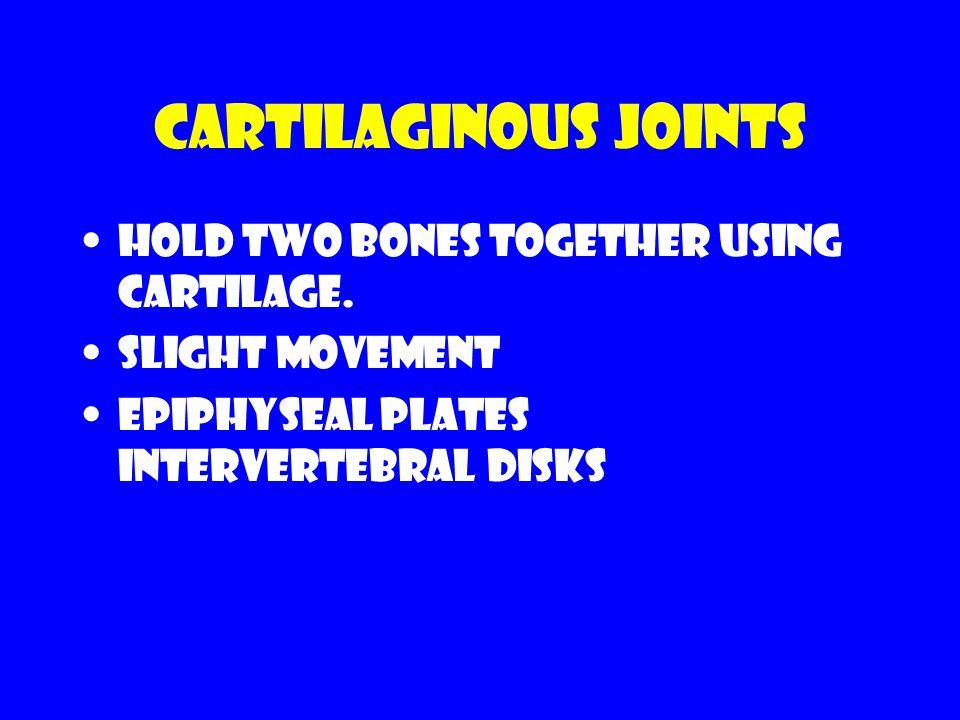 Cartilaginous joints Hold two bones together using cartilage.