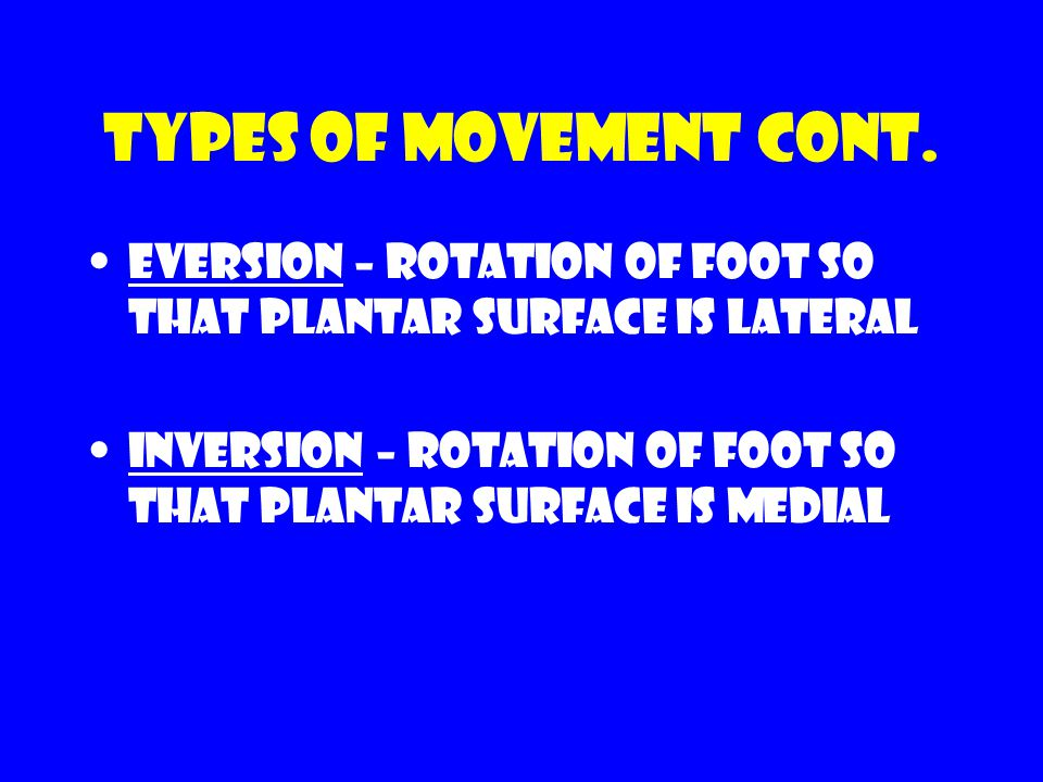 Types of movement cont. Eversion – rotation of foot so that plantar surface is lateral.
