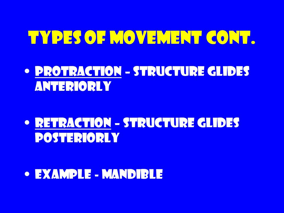 Types of movement cont. Protraction – structure glides anteriorly