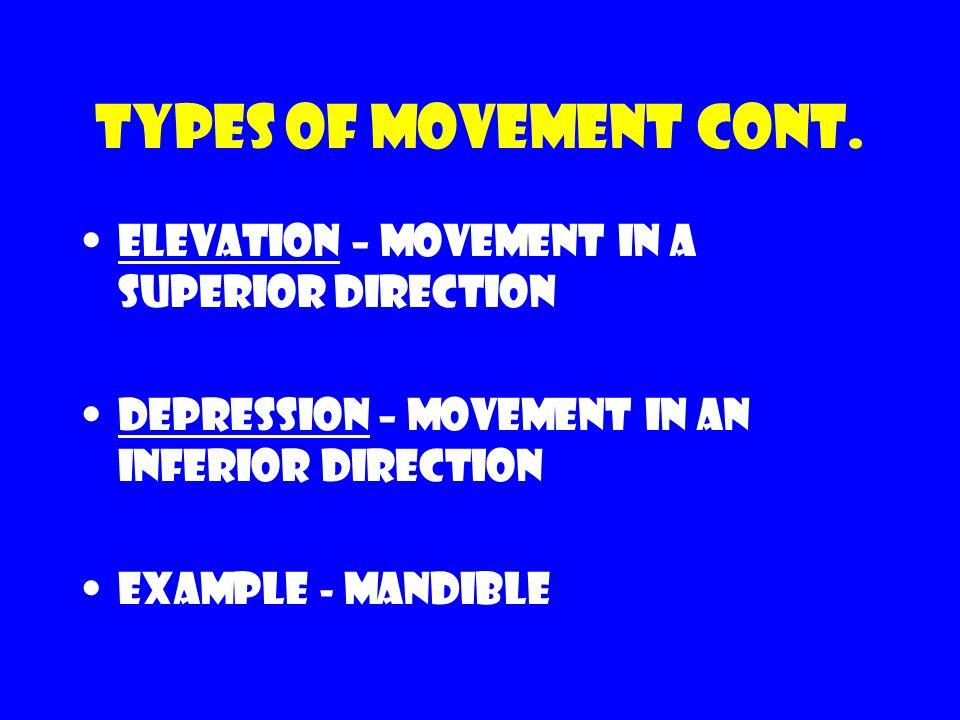 Types of movement cont. Elevation – movement in a superior direction