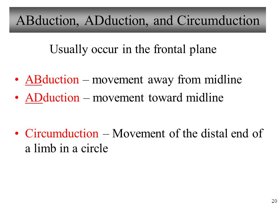 ABduction, ADduction, and Circumduction