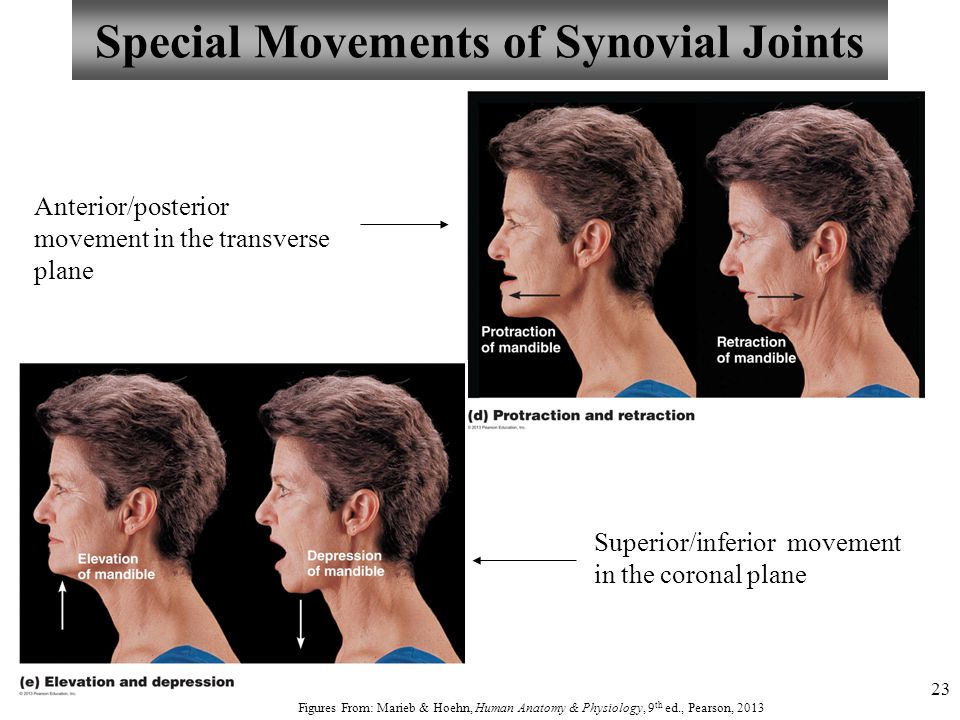 Special Movements of Synovial Joints
