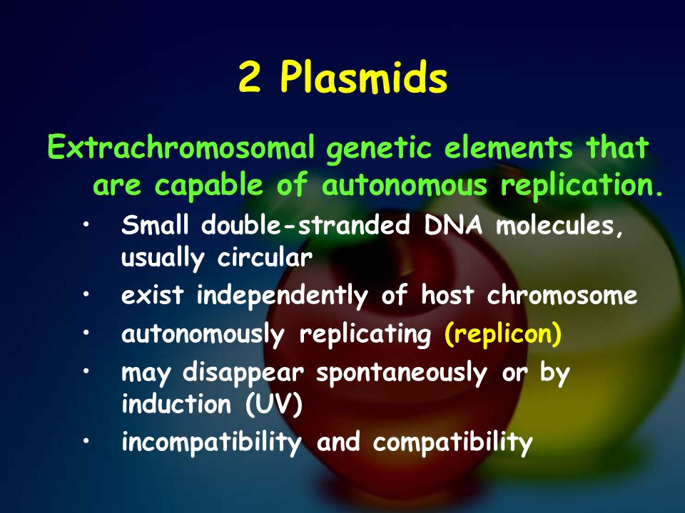 2 Plasmids Extrachromosomal genetic elements that are capable of autonomous replication. Small double-stranded DNA molecules, usually circular.