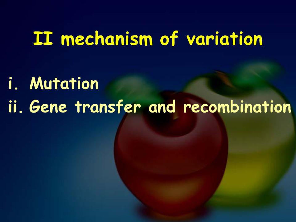 II mechanism of variation