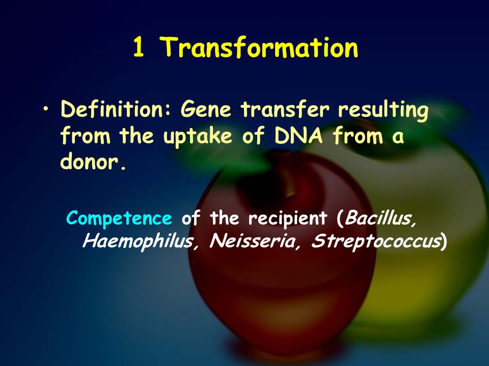 1 Transformation Definition: Gene transfer resulting from the uptake of DNA from a donor.