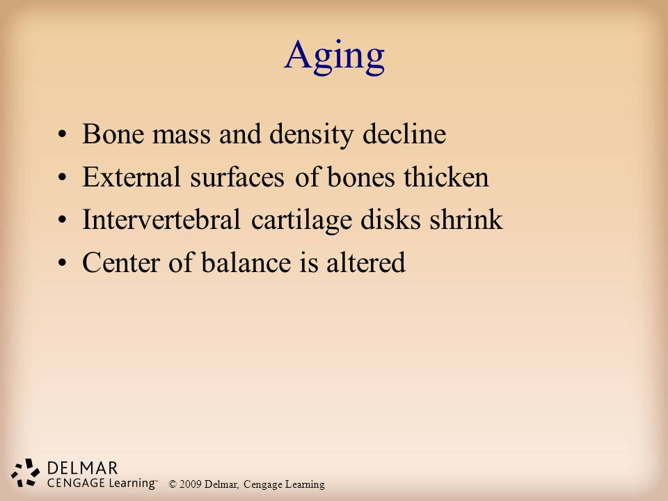 Aging Bone mass and density decline External surfaces of bones thicken