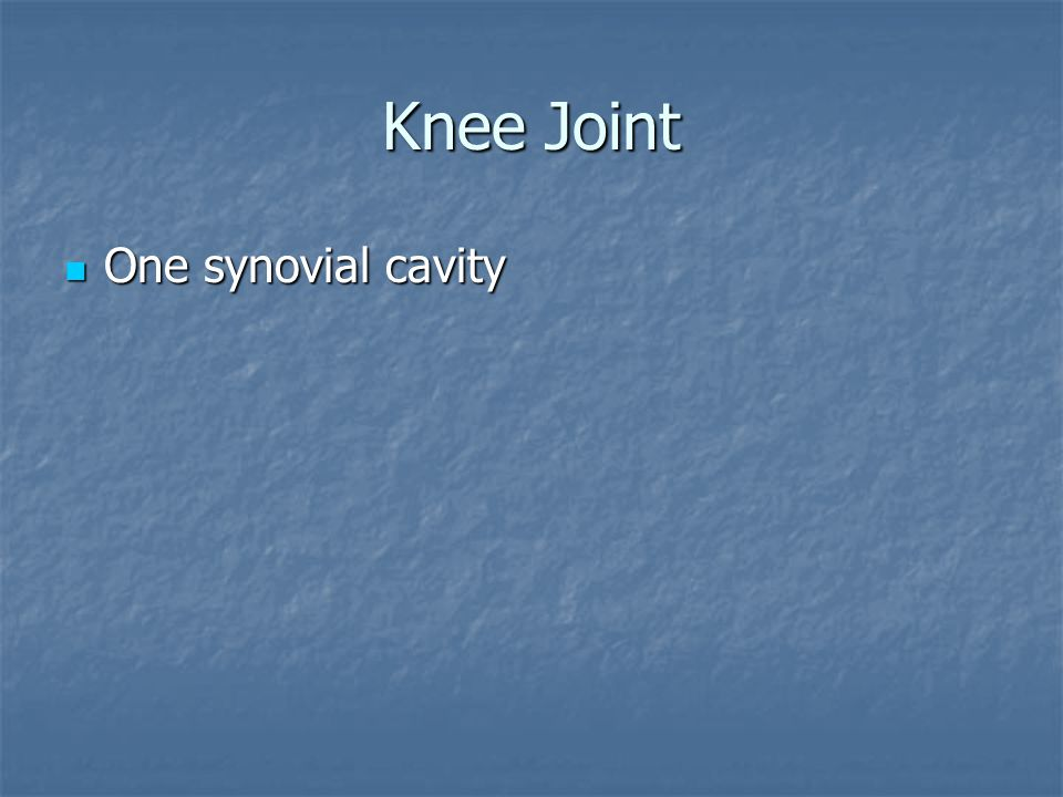 Knee Joint One synovial cavity